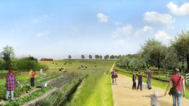 Metropolitan Landscapes - Molenbeek Valley (Foto: Agence Ter)