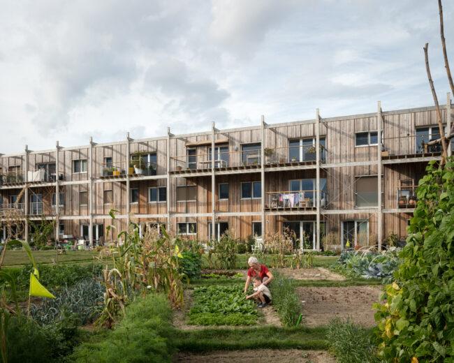 Cohousing Waasland, BLAF Architecten, DENC-STUDIO, (Foto: Stijn Bollaert)